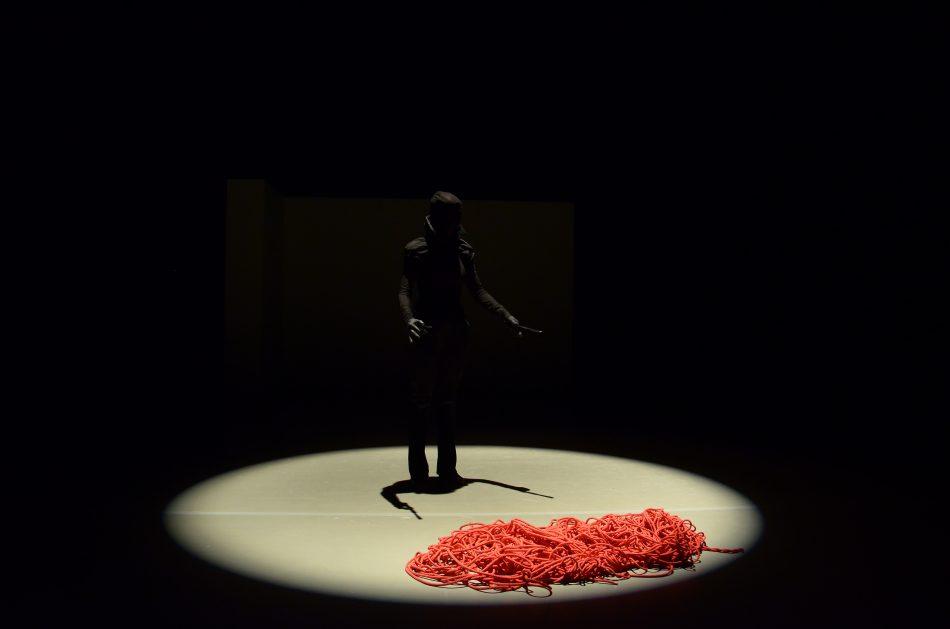 ac202ec958fa9d Perceval, création dansée et mise en scène par Veronica Vallecillo